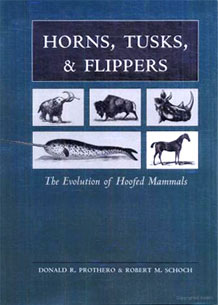 Front cover of Horns, Tusks, and Flippers